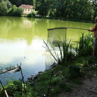 Angler in Winzendorf