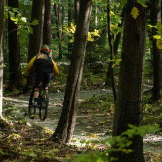 Montainbikerin bei einer Waldtour
